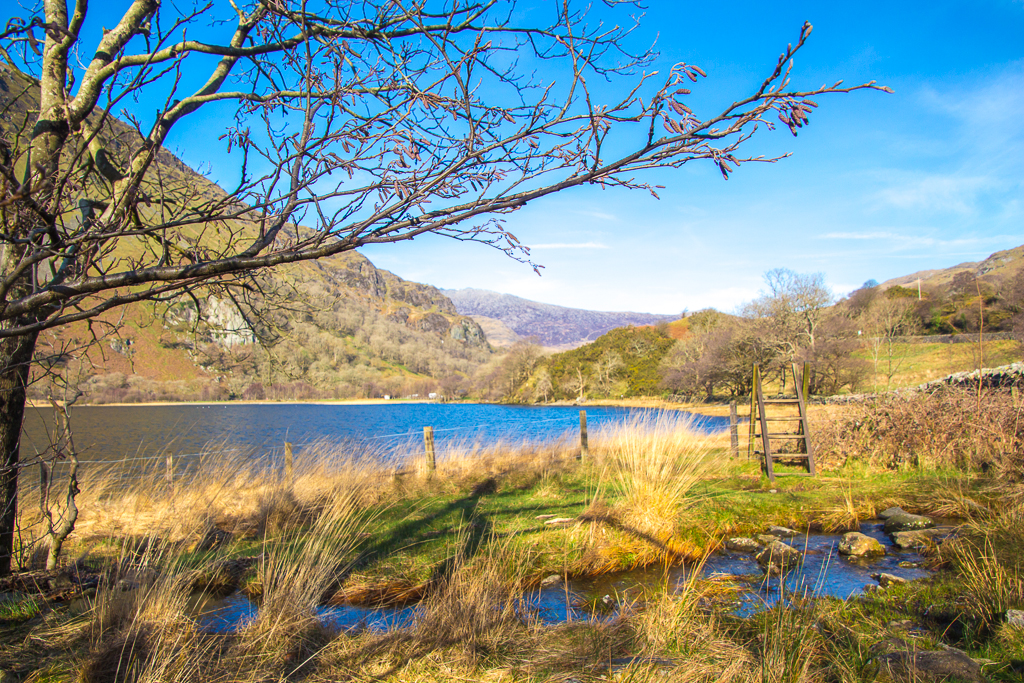 Llyn Gwynant in February Sunshine